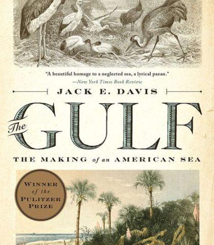 The Gulf (2017)