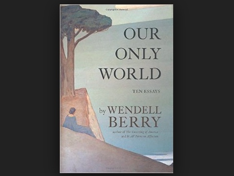 Our only world ten essays wendell berry 2015 ransom fellowship