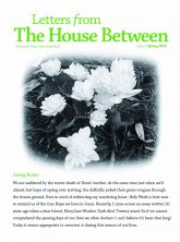 House Between SPRING Cover